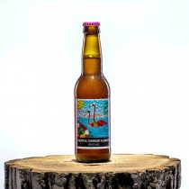 HopTop Tropical Swinger Summer - Fruit Ale 4,5%